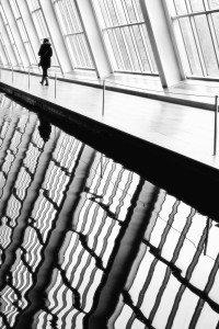 """Lines"" - by: Nina Kling"