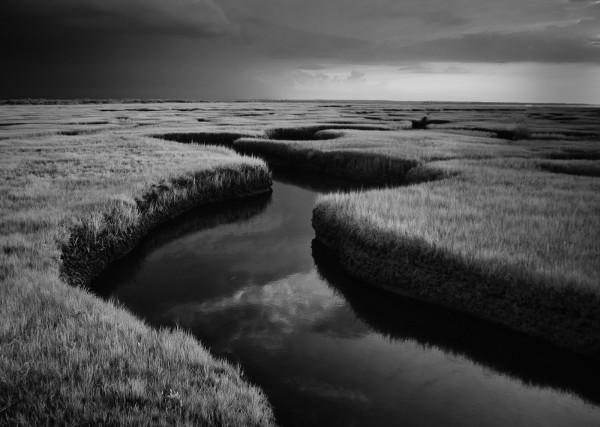 """""""Salt Marsh on Cape Cod"""" By: J Klingel"""