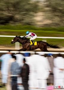 """Rider"" By: Muhammad Owais Khan"