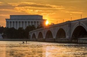 """Summer Along the Potomac"" By: Amy Doherty"