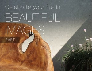 Celebrate Your Life in Beautiful Images Part 1