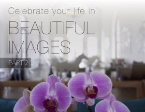 Celebrate Your Life in Beautiful Images Part 2