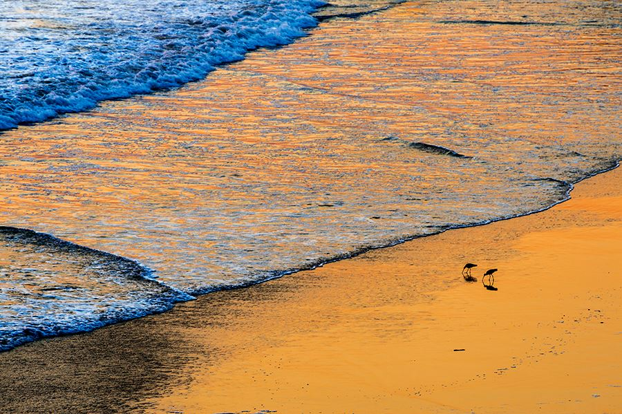 Sandpipers_Beach_Sunset_Drager
